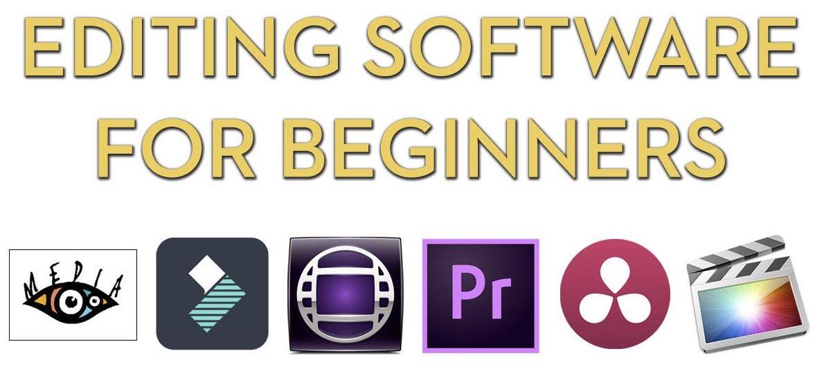 Free essay editor software
